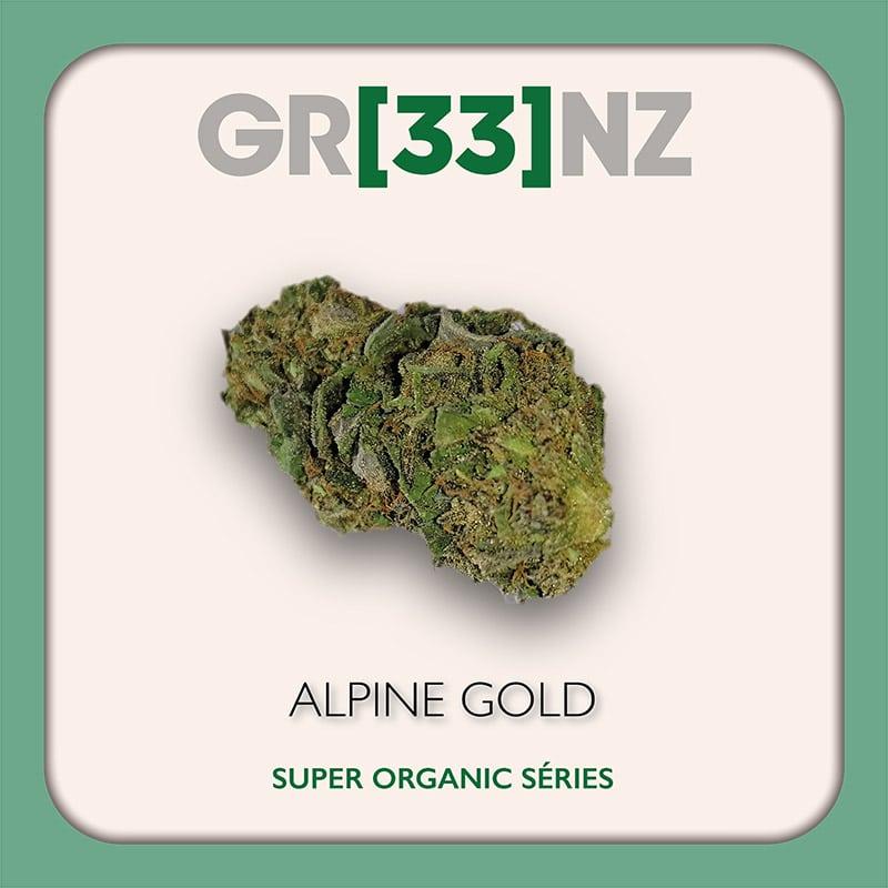 Gr33nz CBD : Alpine Gold